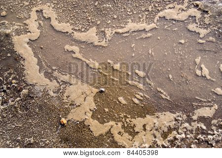 A Pool Of Muddy Ice Water