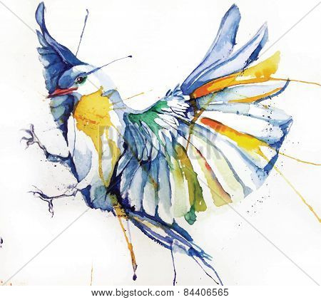 Watercolor-style vector illustration of bird.