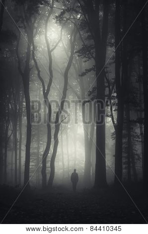 Ghost silhouette in dark forest with fog