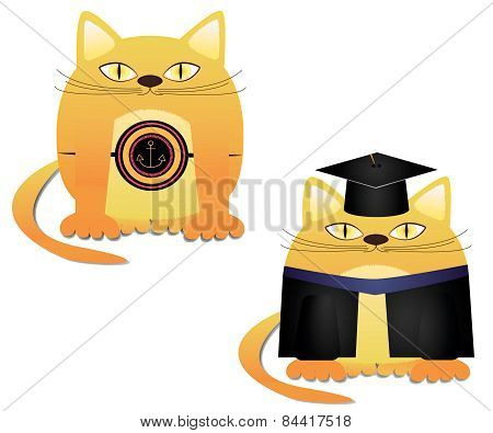 Vector illustration of a a red cat marine and graduate of red cat