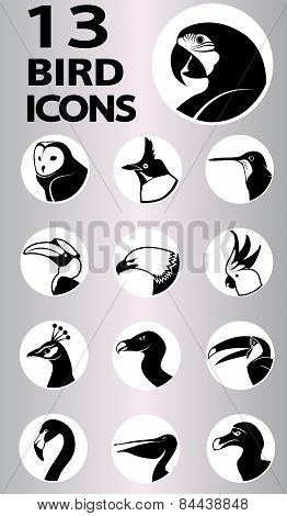 Bird Icons Collection