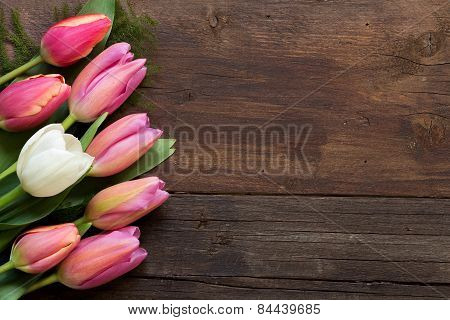 Pink Tulips On Dark Wood Background
