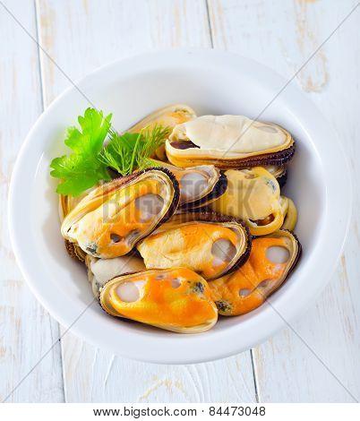 raw mussel