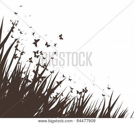 grass and butterflies vector