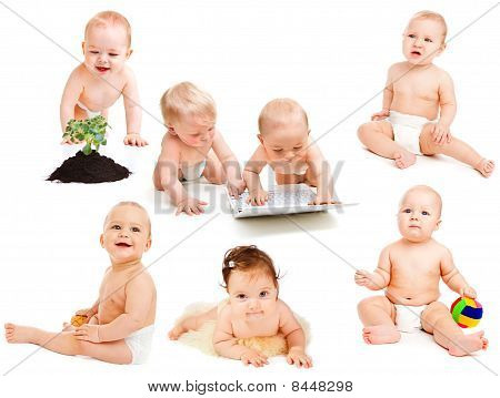 Diaper Babies Collection