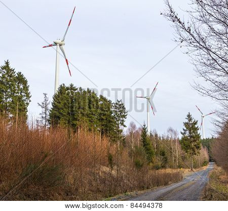 Wind Turbine In A Wind Farm In The Forest
