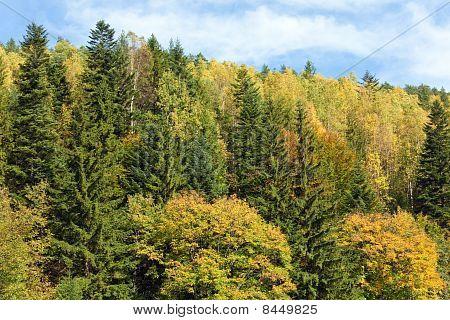 Autumn Mountain Hill  View