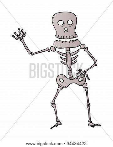 Sketch Of The Skeleton