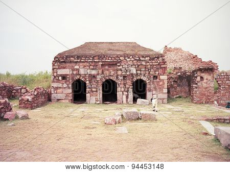 Ruined Mosque at Tughlakabad Fort, New Delhi
