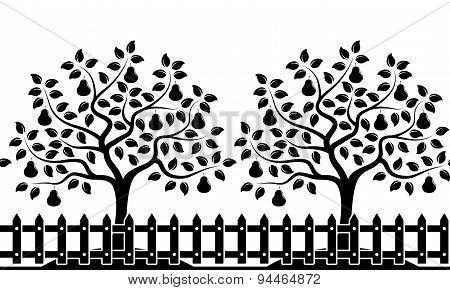 Pear Tree Orchard Border