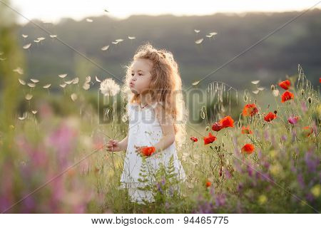Cute baby girl in a flowery summer field