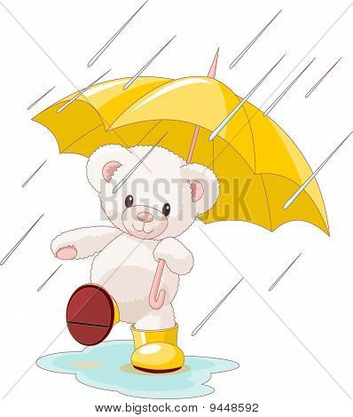 Cute Teddy Bear Under Umbrella