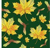 seamless background with maple leaves. No gradient. poster
