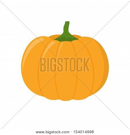 Pumpkin isolated on white background. Autumn pumpkin element oriental bittersweet vector illustration in flat style. Pumpkin icon vegetable. Harvest symbol season decoration.