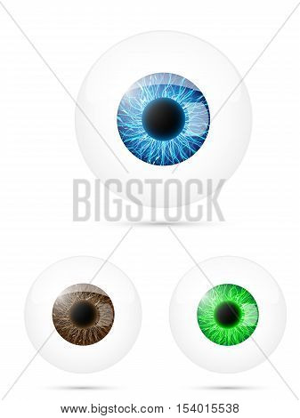 Set of human eyeball. Blue, brown and green eyeball. Vector illustration.