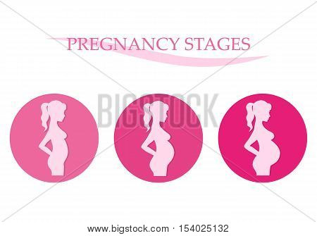 Vector illustration of pregnant female silhouettes. Changes in a woman's body in pregnancy. Pregnancy stages trimesters and birth.