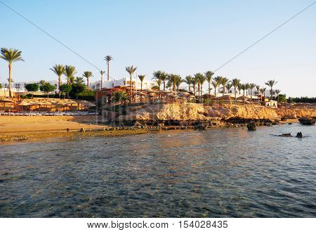 Sharm El Sheikh Egypt - August 25 2016: Palm trees and corral beach at the resort in Sharm El Sheikh.