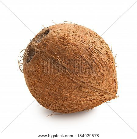 Coconut. Ripe coconut isolated on white background