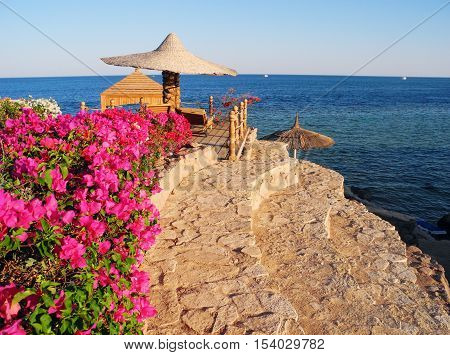 Sharm El Sheikh, Egypt - August 20, 2016: Beach umbrellas and flowers on the coral beach in Sharm El Sheikh.