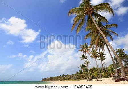 Beautiful beach in Marie-Galante, Guadeloupe (France), Caribbean Islands
