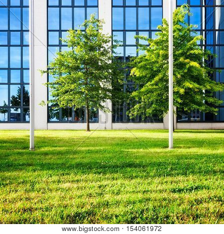 Modern glass office building exterior. Backyard with lawn and trees. Business and success concept