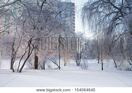 Sunny Winter City. Snow-covered Urban Scene