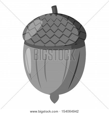 Acorn icon. Gray monochrome illustration of acorn vector icon for web