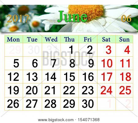 calendar for June 2017 on the background of camomiles and ladybirds