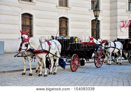 Two horses carriage in Hofburg palace Vienna Austria