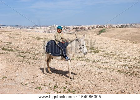 Little Bedouin Child On White Donkey In Desert