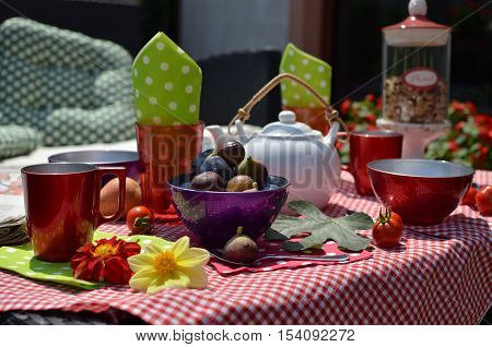 Set of breakfast dish with fruits and garden plants on a garden table