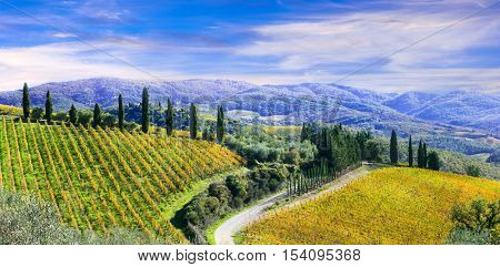 Beautiful scenery of rural Tuscany with autumn vineyards. Italy