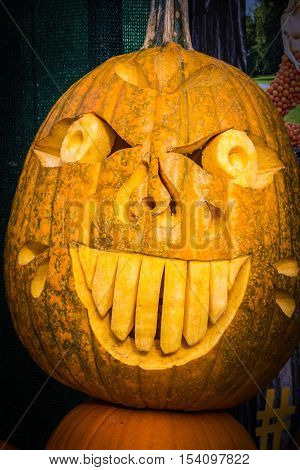 Pumpkin Scary Funny Face Expressive Comedy Halloween Holiday Outhouse Diving Board Head Seasonal Scu