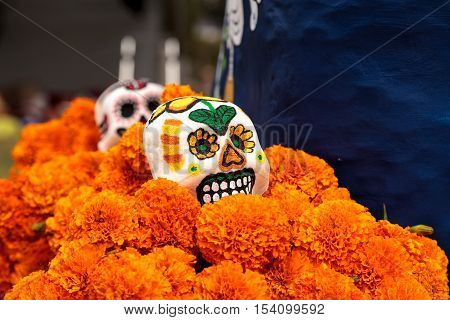 Flower and skeleton alter at Dia de los Muertos, Day of the dead.