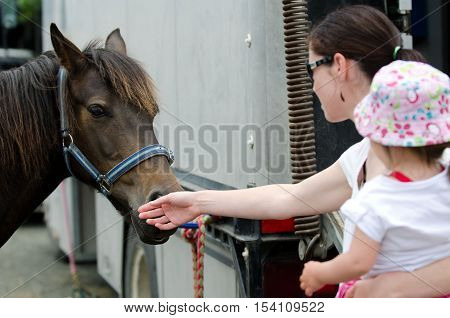 Young mother and her baby girl are petting a Rodeo show horse.