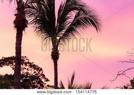 Tropical Sunset In Costa Rica