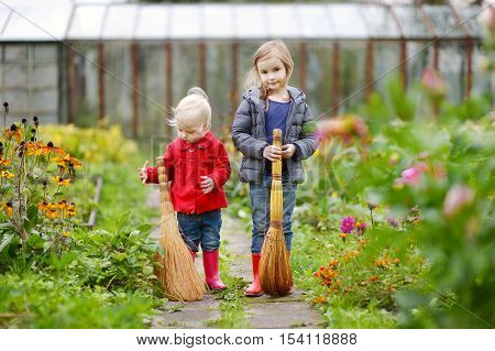 Two Sisters Holding Brooms At Autumn