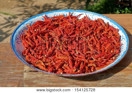 Red chilli pepper drying in the sun