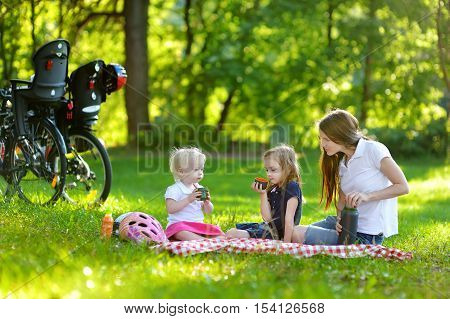 Young Mother And Her Daughters Having A Picnic
