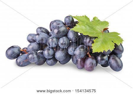 bunch of ripe black grapes with leaves isolated on white background