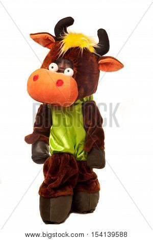 Boy l in the funny cow costume