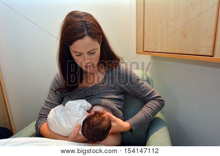Young mother Breastfeeding her Newborn in hospital for the first time. poster