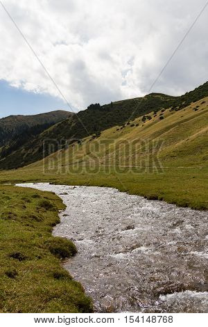 Pure Mountain Stream