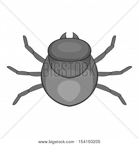 Harvest bug icon. Cartoon illustration of harvest bug vector icon for web