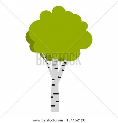 Birch icon. Flat illustration of birch vector icon for web