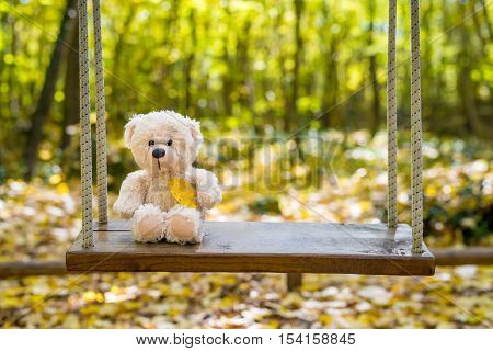 Teddy Bear Swinging In The Autumn Park - Selective Focus, Copy Space