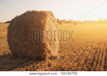 Bale of hay on field. Roll of straw and sky. Work and build better future. Stay loyal to homeland.