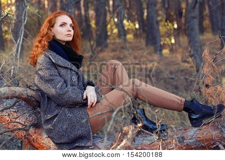 Beautiful elegant red-haired woman sitting on log in autumn forest. Redhead girl in autumn clothes in the forest. Redhead woman outdoor in autumn park weared scarf and coat