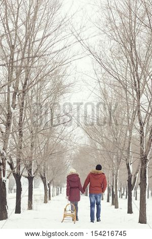 Young couple in love on a winter holiday walking away of the camera puling sleigh and holding hands