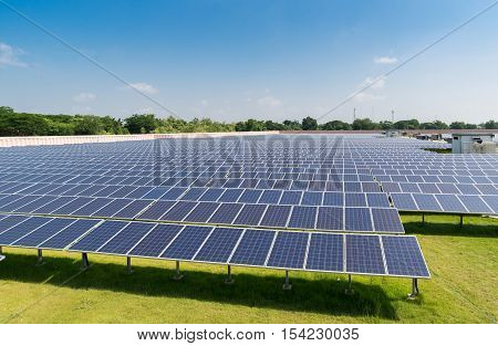 Solar panels under sunlight in solar farm